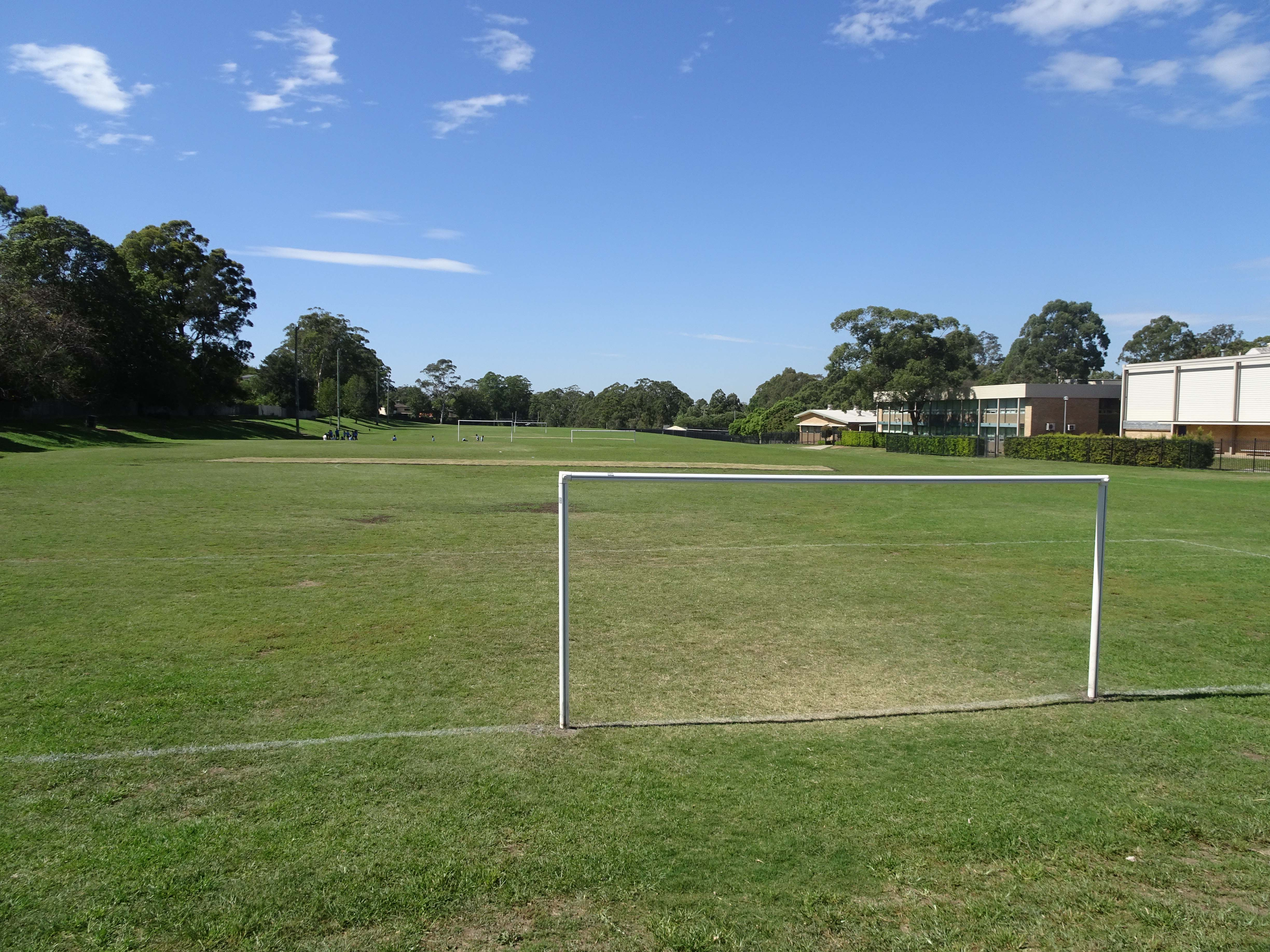 Carlingford High School Oval sports ground