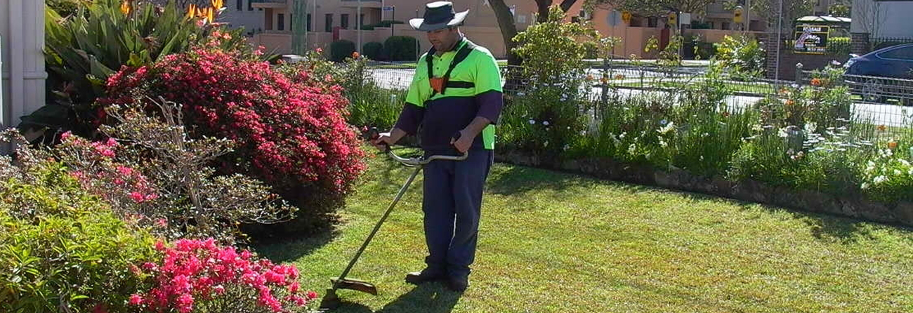 Lawn mowing and basic gardening service city of parramatta for Local lawn mowing services