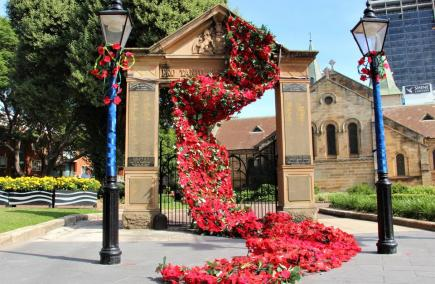 The beautiful 'River of Poppies' display on the Memorial Gates in Centenary Square