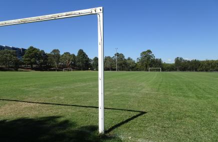 Community facilities, sports fields to reopen across Parramatta