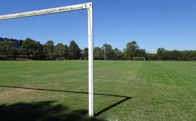 Reopening of sports fields for training under conditions