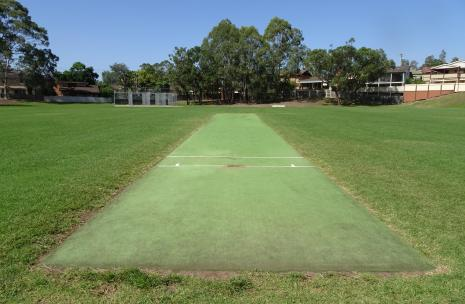Max Ruddock Cricket Wicket and Nets