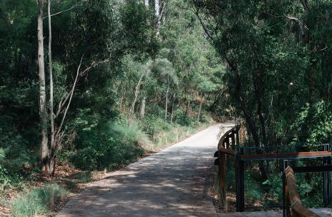 Entrance way for bushwalking track