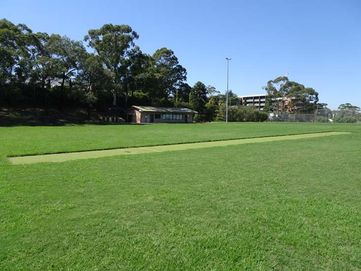 Harold West Reserve Cricket Pitch