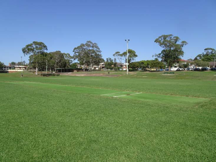 Max Ruddock Reserve Cricket Pitch