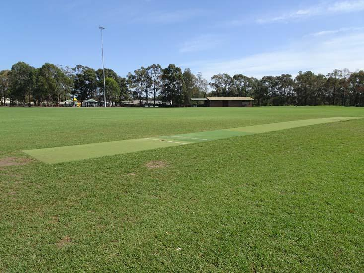 McCoy Park Cricket Pitch