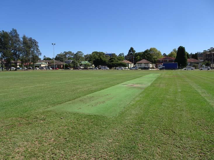 Jones Park Cricket Pitch