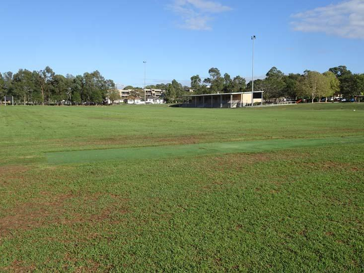 Ollie Webb Reserve Cricket Pitch 2